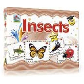 Insects Flash Cards (2412)