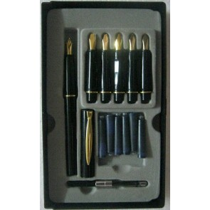 Buy Cheap Skygold Calligraphy Fountain Pen - With 6 Calligraphy Nib At Stationeryx