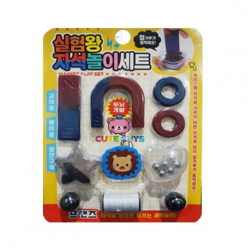 Magnetic Play Set