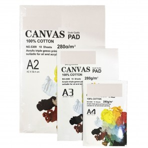 Canvas Pads 10 Sheets For Painting A4