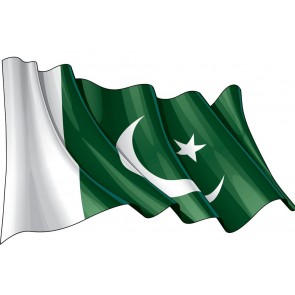 Pakistan Flag 24'' x 36''